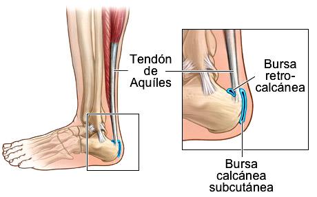 dolor de pies sevilla